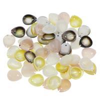 Muschel Perle, Blatt, verschiedenen Materialien für die Wahl, 10x12x2mm, Bohrung:ca. 0.5mm, 30PCs/Tasche, verkauft von Tasche