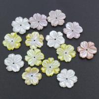 Muschel Perle, Blume, verschiedenen Materialien für die Wahl, 14x14x2.5mm, Bohrung:ca. 0.5mm, 30PCs/Tasche, verkauft von Tasche
